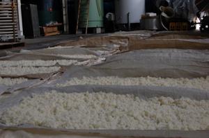 蒸し米の自然放冷